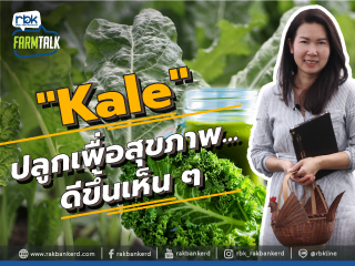 https://www.rakbankerd.com/icon/2906-farm-talk_ฟาร์มบ้านย่า_320x240.jpg