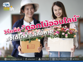 https://www.rakbankerd.com/icon/2920-farm-tips_ไม้หัวดอกสวย2_320x240.jpg