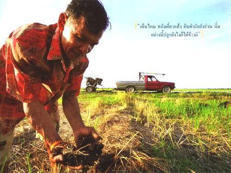 เกษตรอินทรีย์ กับความเป็นธรรมในอาชีพ ทางรอดของเกษตรกร ต่อการทำ เกษตรอินทรีย์